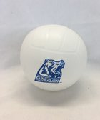 Mini Volleyball w Logo